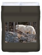 Arctic Wolf Pictures 525 Duvet Cover