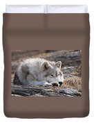 Arctic Wolf Pictures 526 Duvet Cover