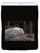 Arctic Wolf Pictures 541 Duvet Cover