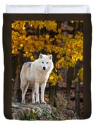 Arctic Wolf Pictures 709 Duvet Cover