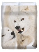 Arctic Wolf Pictures 872 Duvet Cover