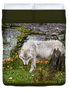 Arctic Wolf Pictures 927 Duvet Cover