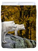 Arctic Wolf Pictures 930 Duvet Cover