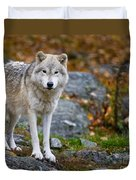 Arctic Wolf Pictures 942 Duvet Cover