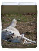 Arctic Wolf Pictures 996 Duvet Cover