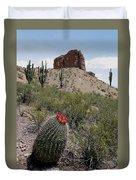 Arizona Icons Duvet Cover
