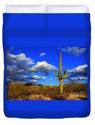Arizona Landscape 2 Duvet Cover