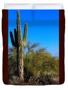 Arizona Saguaro Duvet Cover