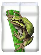 Arizona Tree Frog Duvet Cover
