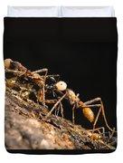 Army Ant Carrying Cricket La Selva Duvet Cover