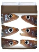 Arrangement Of Small Fish Smelt Duvet Cover