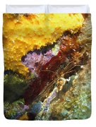 Arrow Crab In A Rainbow Of Coral Duvet Cover