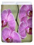 Artsy Phalaenopsis Orchids Duvet Cover