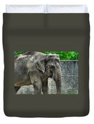 Asian Elephant  0a Duvet Cover