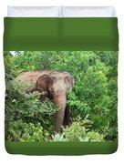 Asian Elephant  Elephas Maximus Duvet Cover