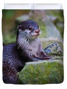 Asian Small Clawed Otter Duvet Cover