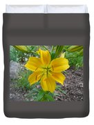 Asiatic Lily 2 Duvet Cover