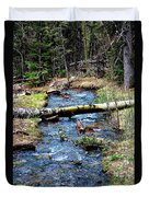 Aspen Crossing Mountain Stream Duvet Cover