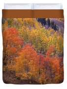 Aspen Grove In Fall Colors Duvet Cover