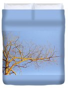 Aspen In The  Autumn Sun Duvet Cover