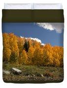 Aspen On The Road To Telluride Dsc07397 Duvet Cover