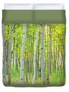 Aspen Tree Forest Autumn Time  Duvet Cover