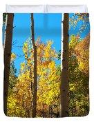 Aspen Trees In Fall Duvet Cover