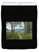 Aspen Trees On Trail To Jackson Lake At Willow Flats Overlook In Grand Teton National Park-wyoming  Duvet Cover