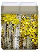 Aspens At Autumn Duvet Cover by Andrew Soundarajan
