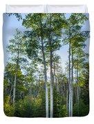 Aspens At Sunrise 1 - Santa Fe New Mexico Duvet Cover