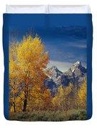 1m9353-aspens In Autumn And The Teton Range - V Duvet Cover