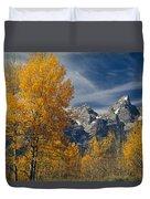 1m9352-aspens In Autumn And The Teton Range Duvet Cover