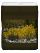 Aspens In Snow Duvet Cover