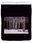 Aspens In Snow Duvet Cover