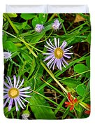 Asters And Scarlet Paintbrush On Swan Lake Trail In Grand Teton National Park-wyoming  Duvet Cover