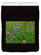 Asters On Heron Lake Trail In Grand Teton National Park-wyoming- Duvet Cover