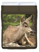 At Rest In The Rockies Duvet Cover