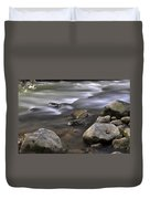 At The Banias River 3 Duvet Cover