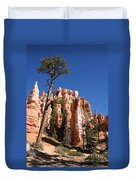 At The Bottom Of The Bryce Np Duvet Cover