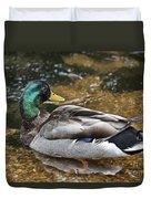 At The Duck Pond V5 Duvet Cover