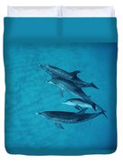 Atlantic Spotted Dolphin Adults Duvet Cover