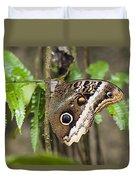 Atreus Owl Portrait  Costa Rica Duvet Cover