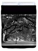 Audubon Park Oaks Duvet Cover