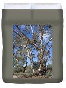 Australian Native Tree 12 Duvet Cover