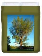Australian Pine At Sundown Duvet Cover