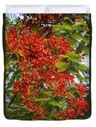 Australian Poinciana Tree Duvet Cover