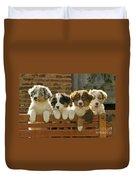 Australian Sheepdog Puppies Duvet Cover
