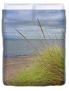 Autumn Beach Grasses Duvet Cover