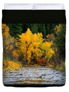 Autumn Beauty In Boise County Duvet Cover