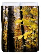 Autumn Birch Trees Duvet Cover